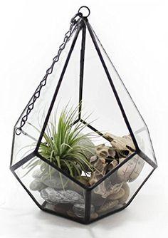 High Quality Glass Terrarium Succulent Planter And Candleu2026