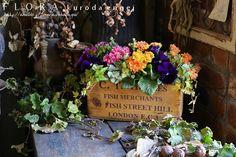 パンジー3小鉢寄せ植え の画像|フローラのガーデニング・園芸作業日記