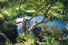 Miravalles Mineral Hotsprings - Crystal clear, warm, wild, natural, undeveloped and utterly secret