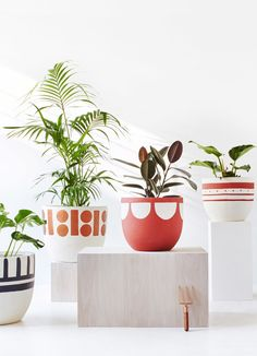 Plant pots for indoors or out! I especially love the sweet concrete numbers!