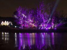Morton Arboretum Holiday Lights. Pinned by #CarltonInnMidway - www.carltoninnmidway.com