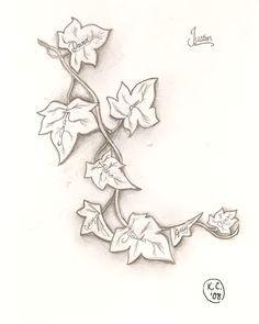 Tattoos! on Pinterest | Ivy Tattoo Ivy and Ivy Leaf