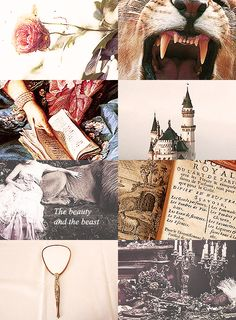 Fairy Tales Picspam  (inspired by catmonocles 's mythology series) // Beauty & the Beast