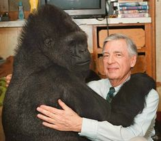 Mister Rogers and Koko... she watched him everyday and the first thing she did when she met was take off his shoes like he did for the show.
