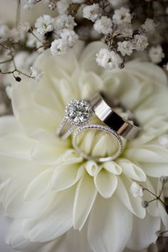 Wedding Rings ring shot idea (white dahlia/ baby´s breath) – Somis Wedding at Hartley Botanica from Andy Seo Photography Wedding Rings ring shot idea (white dahlia/ baby´s breath) – Somis Wedding at Hartley Botanica from Andy Seo Photography Wedding Poses, Wedding Day, Wedding Events, Wedding Ceremony, Weddings, Wedding White, Wedding Dresses, Trendy Wedding, Perfect Wedding