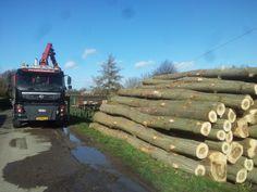 aanvoer bomen februari 2014  Oude - Kraaijertsedijk  Lewedorp