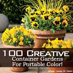 100 Creative Container Gardens In Pictures/ click the spectacular container garden link