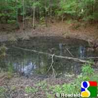 Mars Bluff Crater, Florence, SC, Offbeat Attractions, Things to Do