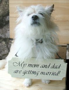 Custom Wedding or Engagement Sign - For Small Dog -  Reclaimed Wood Sign  Finnegan will make the best ring bearer. Except he would be trying to eat the sign the whole way down the isle.
