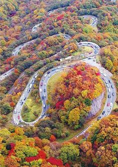 A winding road. [uploaded image - no link - no spam. ;) Mo]
