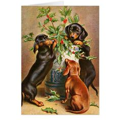 Shop Vintage Christmas dachshund dogs Holiday Card created by kikiwayVintage. Vintage Dachshund, Dachshund Funny, Dachshund Art, Dachshund Puppies, Weenie Dogs, Vintage Dog, Daschund, Doggies, Christmas Dog