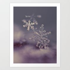 #macro #snowflakes #soft  The Closer I Get Art Print by Marisa M. Johnson