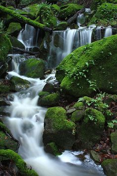 Creekworld | Flickr - Photo Sharing!