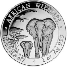 Buy Now: http://www.coincommunity.com/go/_to.asp?target=http://www.jmbullion.com/2016-1-oz-somalian-silver-elephant/  JM Bullion Eagle Silver Rounds and 2016 1 Oz Somalian Silver Elephant on Sale…