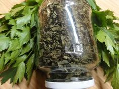 Jak uchovat libeček na zimu   recept na domácí polévkové koření   jaktak.cz Korn, Preserves, Celery, Pickles, Cucumber, Herbs, Vegetables, Cooking, Gardening