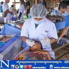 សកម្មភាពរបស់អង្គការស៊ីប៊ីអិនកម្ពុជា(CBN Cambodia) នឹងបុគ្គលិកស្ម័គ្រចិត្តបានចុះព្យាបាលជំងឺទូទៅនឹងមាត់ធ្មេញ ដោយឥតគិតថ្លៃនៅក្នុងខេត្ត ព្រះវិហារ ថ្ងៃទី ១២ ខែ តុលា ឆ្នាំ ២០១៦ នៅភូមិឈើទាលគង ឃុំជាំក្សាន្ត ស្រុកជាំក្សាន្ត។ តោះចូលរួមចំណែកអភិវឌ្ឍន៌ដល់សហគមន៏យើងទាំងអស់គ្នា! លេខទូរស័ព្ទ: 023 223 489 www.cbncambodia.com www.facebook.com/cbncambo twitter.com/cbncambo www.pinterest.com/cbncambo www.instagram.com/cbncambo