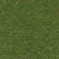 Zero CC tileable grass texture, photographed and made by me. CC0