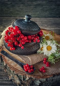 Ripe berries of viburnum in a beautiful ceramic bowl with a lid in rustic style with flowers. Photo Fruit, Fruit Picture, Fruits And Veggies, Vegetables, Fruit Photography, Primal Recipes, Weird Food, Summer Fruit, Ceramic Bowls