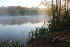 Carp Fishing. A beautiful photo of a carp fishing scene at dawn. See many more stunning photos like this at http://bestbaitforcarpfishing.com/carp-gallery
