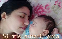 """""""Si vis amari, ama""""  Se quer ser amado, ame : If you wish to be loved, love"""