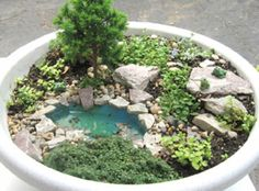 Fairy Garden idea Mini garden with mini pond! Mini Fairy Garden, Fairy Garden Houses, Gnome Garden, Dream Garden, Garden Ponds, Fairy Gardening, Koi Ponds, Gardening Quotes, Pot Jardin