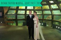 Animal Aquarium Zoo Wedding Theme on Marry Me Metro a city wedding blog http://marrymemetro.com