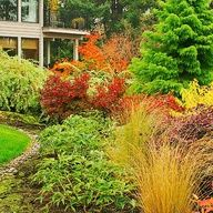use of gracefully arching willow  cryptomeria shrubs and trees, combine for a striking design. use of river rock provides an informal edging.