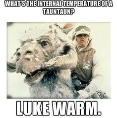 The Lighter Side of the Force: No tauntauns were harmed in the making of this meme...