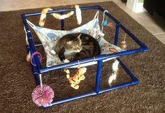 PVC Cat Hammock - PetDIYs.com