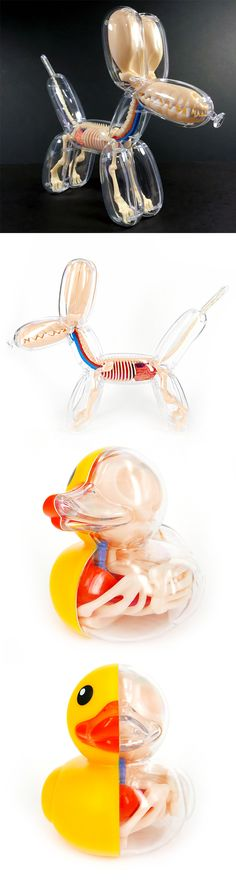 Anatomical Balloon Dog and Rubber Ducky Models by Jason Freeny