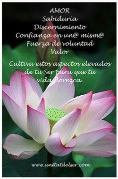 Uno de los secretos... Cultiva los aspectos elevados de tu Ser ;-)  Émer Roures www.unitatdelser.com