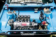 Carbono | #FierrosCarbono - Olafo, el escorpión azul.