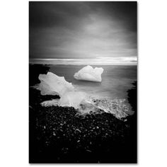 Trademark Fine Art 'White as Ice' Canvas Art by Philippe Sainte-Laudy, Size: 30 x 47, Multicolor