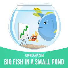 """""""Big fish in a small pond"""" is an important person in a small place or organisation.  Example: As the manager of a local company, he enjoys being a big fish in a small pond."""
