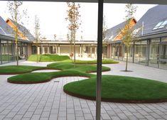 La cour du Endeavour Primary School | Garsy NV