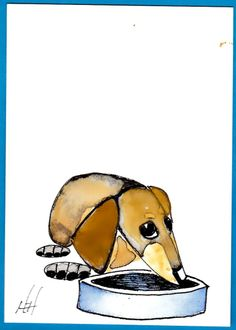 Dachshund Clube - Harry E. Hooper