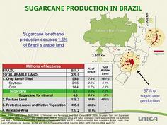 USDA, Zucchero: la situazione in Brasile - Materie Prime - Commoditiestrading