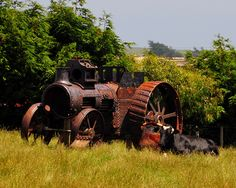 Traction engine for removal. Needs work. Steam Tractor, Unique Cars, Steam Engine, Garden Ornaments, Yards, Tractors, Abandoned, Restoration, Trucks