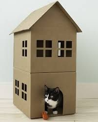 How To Make A Cardboard Cat Playhouse. How To Make A Cardboard Cat  Playhouse At Home Article. Cat Playhouse For Your Home.
