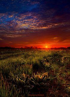 Dreamland | Flickr - Photo Sharing!