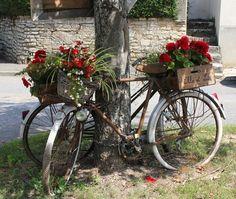Bike - nice photo
