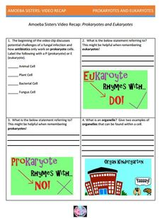 1000+ images about Amoeba Sisters Handouts on Pinterest ...