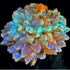 "Opal ""Pineapples"" - an opal pseudomorph formed by the replacement of glauberite by opal - found only in New South Wales. photo: Grant Pearson Visit Amazing Geologist for more.."