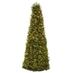 """39in Boxwood Cone w/Lights - One of our favorite shrubs is the boxwood. That's because it's the ideal """"shaping"""" plant. With its tiny, lush evergreen leaves densely surrounding its supporting twigs, the Boxwood conforms to almost any sculpted shape. And in this case, we've chosen a cone shape. At 39"""" in height, it stands tall and proud. But wait – there's a surprise – it comes complete with lights to delight all viewers. Makes an ideal addition to any room or office, and makes a great gift"""