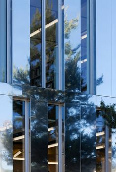 Terrasson's Library / Architecture Patrick Mauger