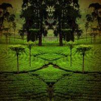 Cuba Libre Album Version 1 by Bernd Wendholt on SoundCloud