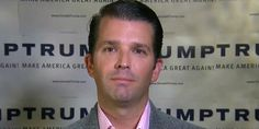 Donald Trump Jr. likes Parkland shooting conspiracy theories on Twitter