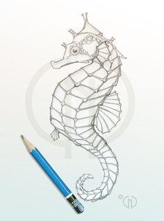 Seahorse sketch by Catherine Noel Seahorse Drawing, Seahorse Painting, Ocean Drawing, Seahorse Tattoo, Seahorse Art, Seahorses, Drawing Drawing, Baby Seahorse, Animal Drawings