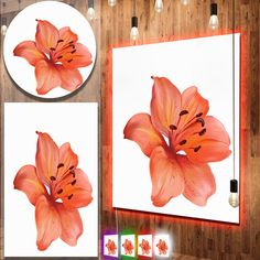 cool Designart 'Beautiful Red Lily Watercolor Sketch' Flower Metal Wall Art Check more at http://hasiera.co.uk/s/furnishings/product/designart-beautiful-red-lily-watercolor-sketch-flower-metal-wall-art/