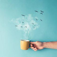 Lindo Dia para se tomar café!